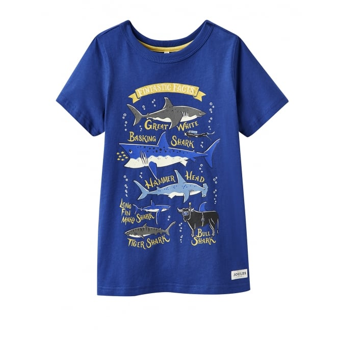 Joules Older Boy's Ray Jersey T Shirt