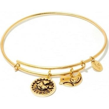 Friend & Family Niece Expandable Bangle